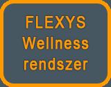 wellness-rendszer